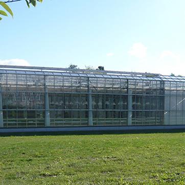 Universität Rostock, Agrar- und Umweltwissenschaftliche Fakultät